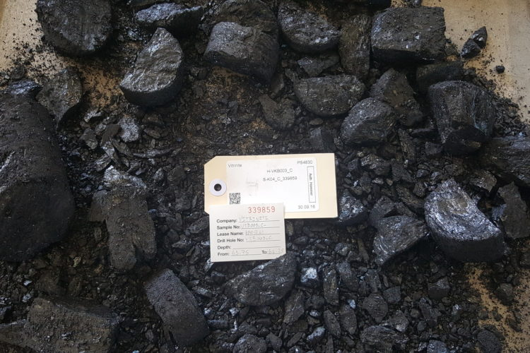 Vitrinite - Karin Basin - High Fluidity Coking Coal